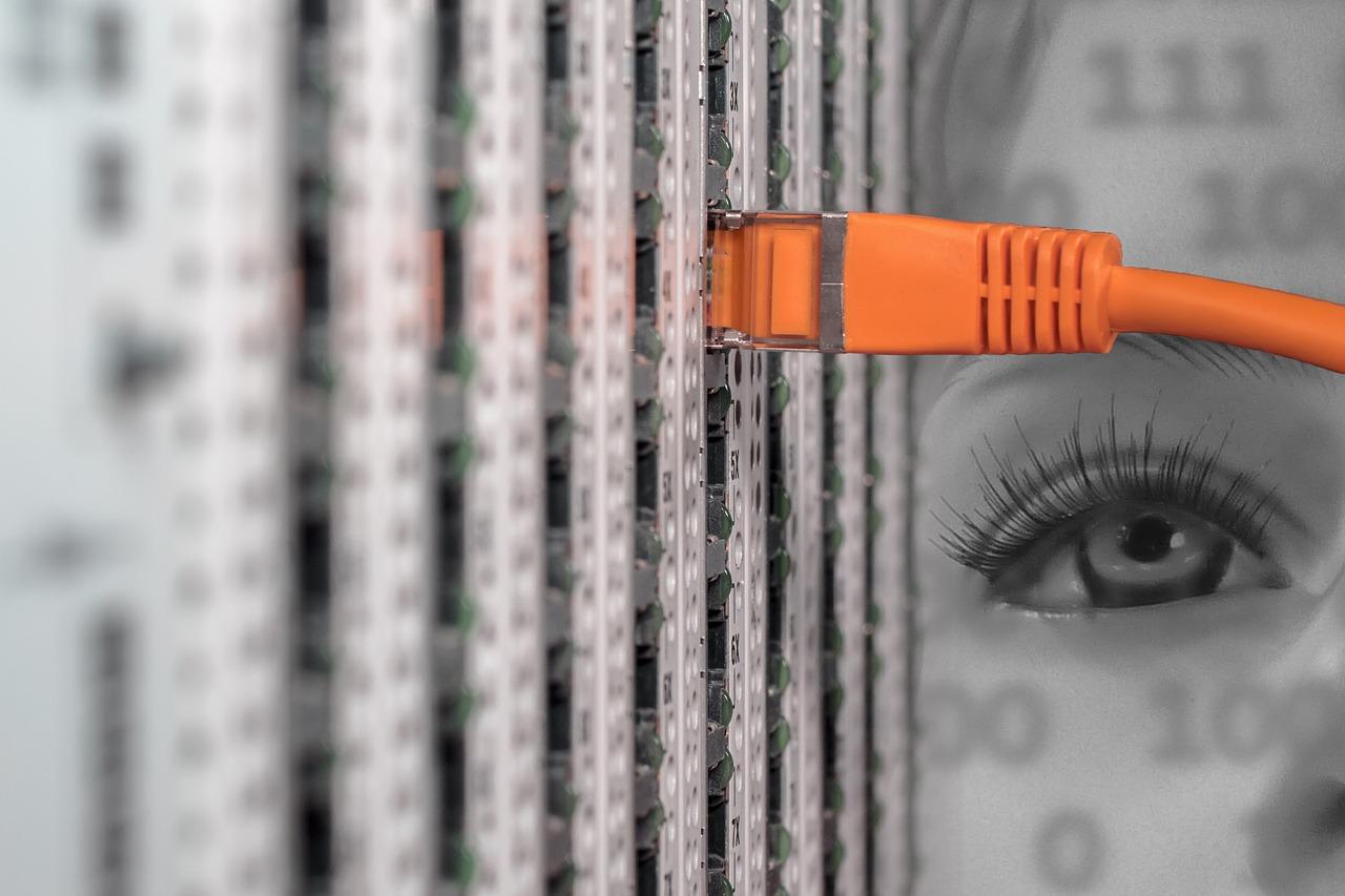 Τί Είδος Web Hosting Χρειάζεστε;